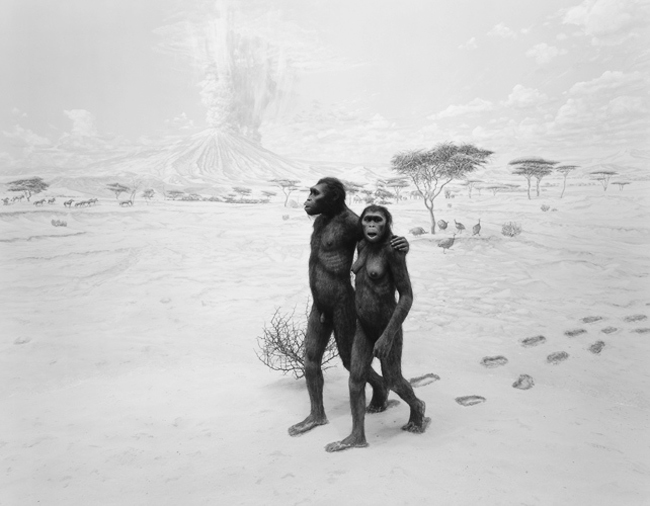 toumai the oldest relative of the human The discoverers claimed that s tchadensis is the oldest known human ancestor after the split of the human line from that of chimpanzees [7] the bones were found far from most previous hominin fossil finds, which are from eastern and southern africa.