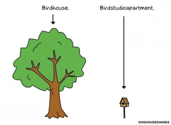 birdhousestudioapartment