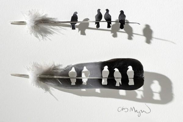 feather-art-chris-maynard1-600x400