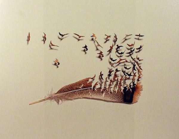 feather-art-chris-maynard2-600x465