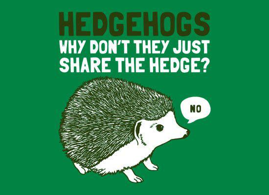 hedgehogsnoshare