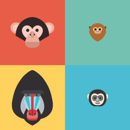 primates02