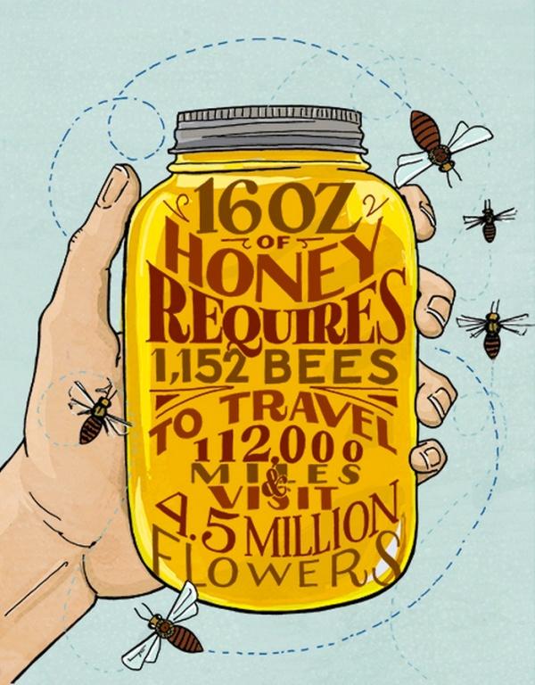 honeystats