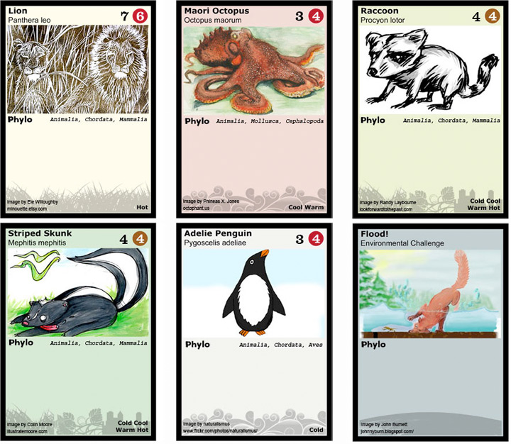 phylocards
