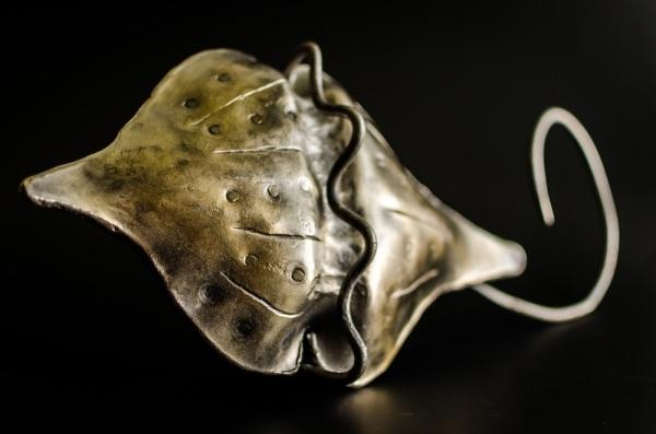 Dinoflagellate