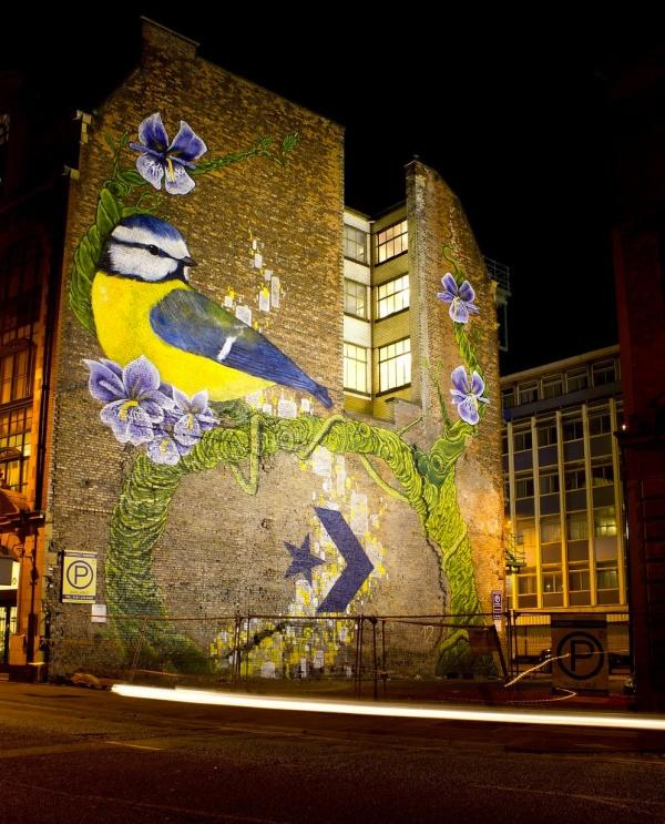 birdgraffiti01