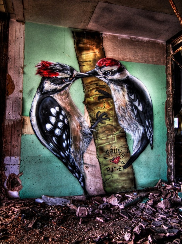 birdgraffiti05