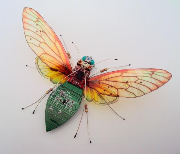 bug-4